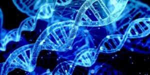 analisi genetiche